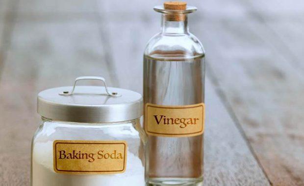 white vinegar miracle cleaner